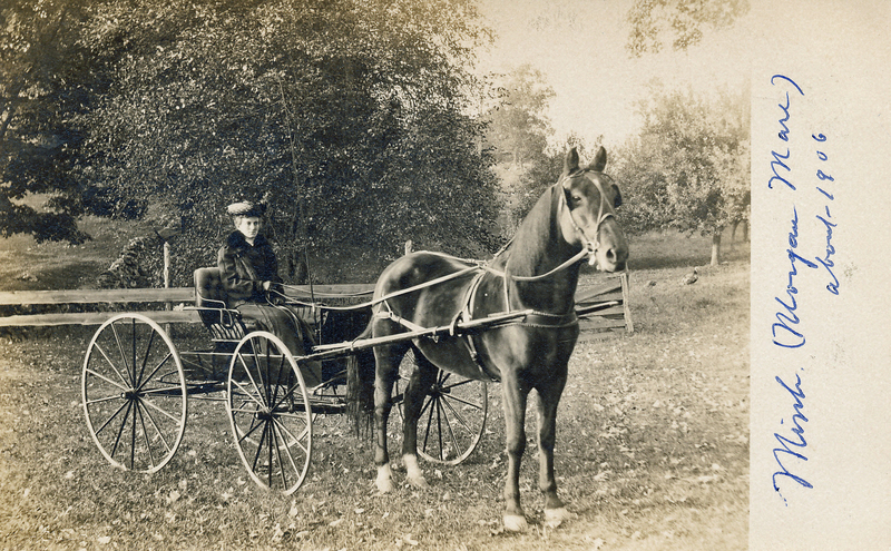 Mary Cook in carriage.jpg