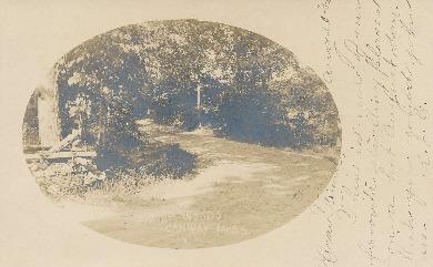 Parson's Woods.pdf