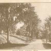 Postcard of Street View, Conway, Mass.