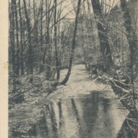 Postcard of Trout Stream